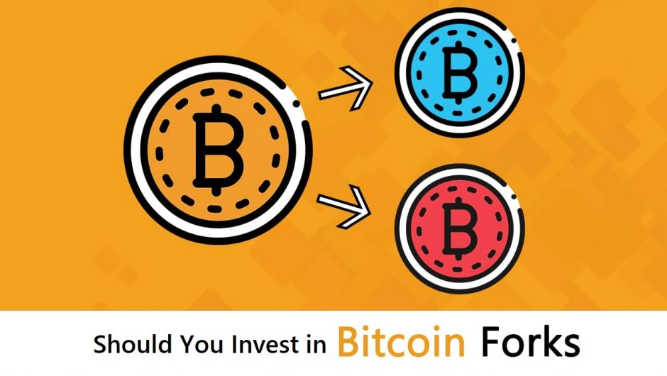 Should You Invest in Bitcoin Forks